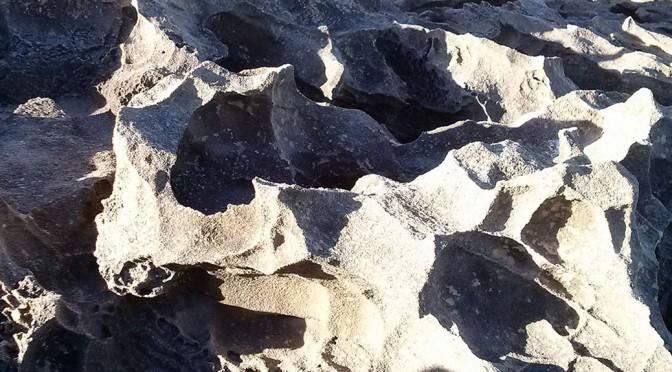 Whale Trail Rock