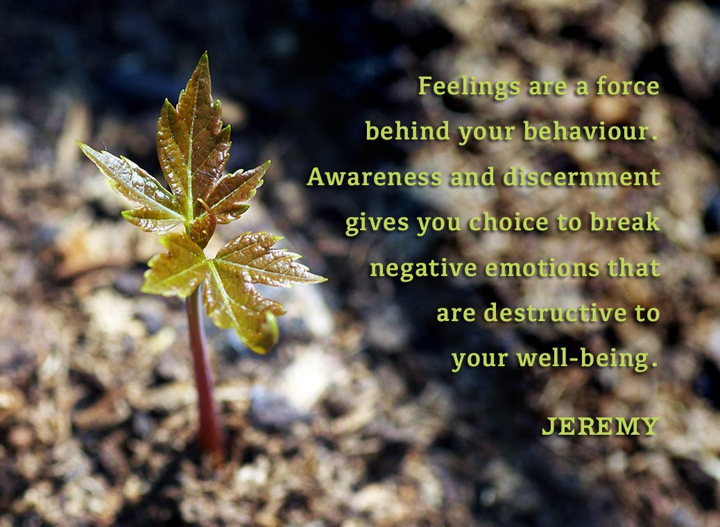 Feelings are a force behind your behaviour.